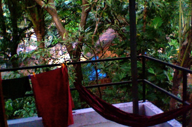 November 2014 anuttara tantra for Balcony jungle